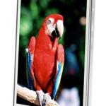 Spesifikasi Polytron Rocket Quadra W6500, Android KitKat Quad Core Harga 1 Jutaan