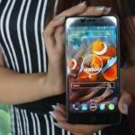 Spesifikasi Axioo Venge, Smartphone Lokal Rp 2 Jutaan Dengan RAM 3GB