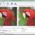 Cara Memperkecil Ukuran File Foto Menggunakan Aplikasi
